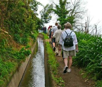 Programma para solteiros em Ilha da Madeira 3
