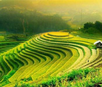Programma para solteiros em Hanoï - Ha Long Bay - Hoa Lu 4