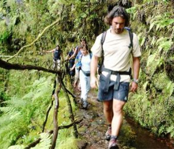 Programma para solteiros em Ilha da Madeira 5